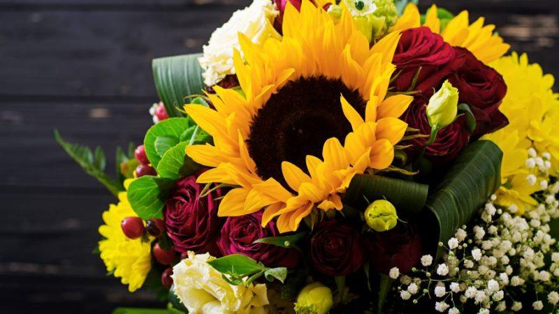 Scegli la sorpresa più bella con i fiori a domicilio